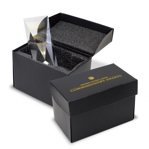 "Large 1 Piece Gift Box Packaging (9""x6""x5"")"