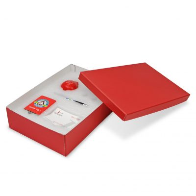 "Medium 2 Piece Gift Box Packaging (12.75""x8.75""x3.25"")"