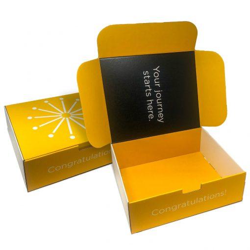 "Custom Boxes Econolux Mailer Jumbo Size 13"" x 11"" x4"""